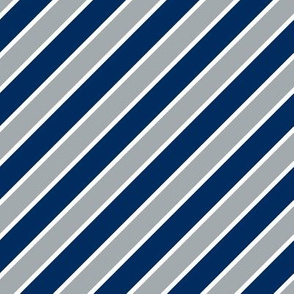 Indianapolis Colts team colors