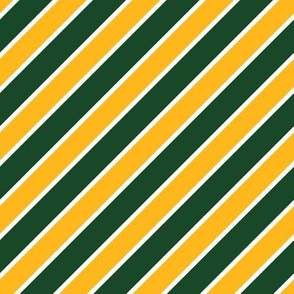 Green Bay Packers Team colors