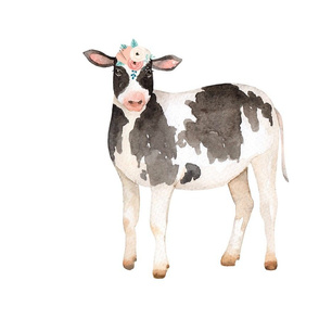 Cow with Coral/Blush Flower Crown
