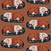 Rrenglish-bulldog-napping_shop_thumb