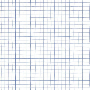 Wonky grid with blue lines on white ground