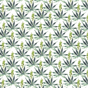 Watercolor Agave Plant Pattern