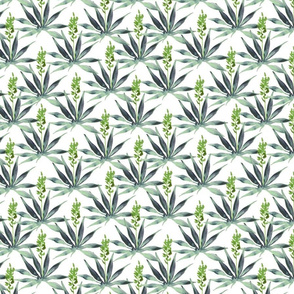 Agave Watercolor Pattern