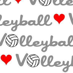 Love Volleyball Large Scale