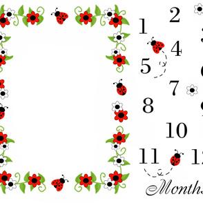 Ladybug Baby Girl Milestone Month Blanket