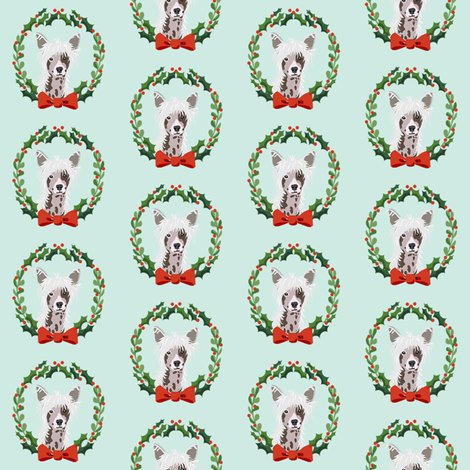 Rxmas-chinese-crested-2_shop_preview
