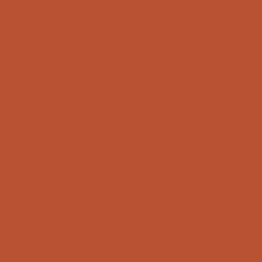 Copper rust solid, outback sunset