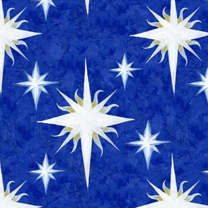Witchy Christmas Stars Paint Canvas Pattern