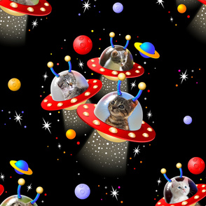 UFO Cats in UFOs Pattern