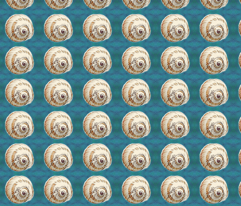 shell on teal blue background fabric by koalalady on Spoonflower - custom fabric