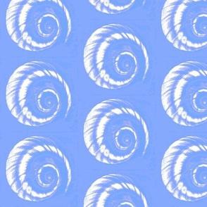 shell spiral2