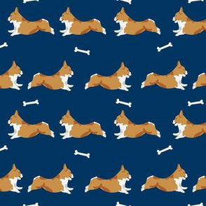 running corgi - corgi, dog, dog run, dogs, dog breed, - navy