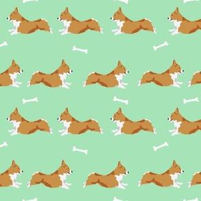 running corgi - corgi, dog, dog run, dogs, dog breed, - mint