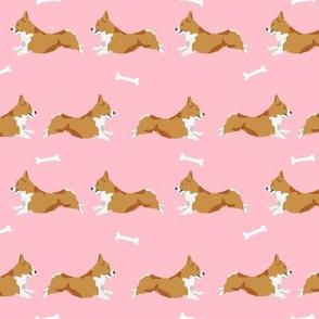 running corgi - corgi, dog, dog run, dogs, dog breed, -  pink