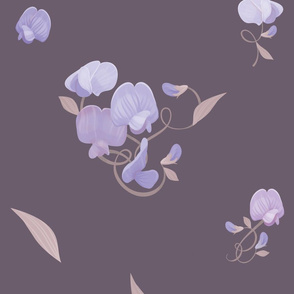 Sweet Peas (Royal Purple on Grape)