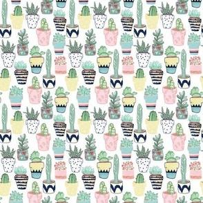 Cute Cacti In Pots - Small Scale