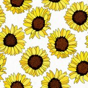 Rrsunflowers-on-white_shop_thumb