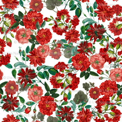 "18"" Red Roses on White"