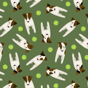 Throw it! Jack Russell dogs with tennis balls