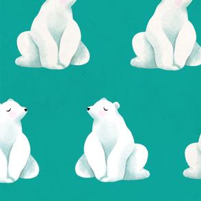 Polar Bear Coordinate