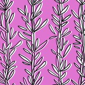 Rrosemary-herb-pink-and-white-20x20_shop_thumb