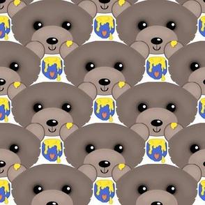 Be my Honey Bear /boy