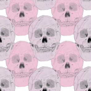Pink and Purple Skulls on a White Background