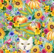 Harvest Pumpkin, corn, sunflower and cats