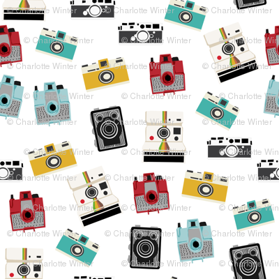 vintage cameras - polaroid, camera, vintage, leica, brownie, imperial cameras - white