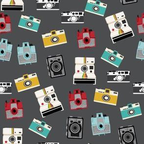 vintage cameras - polaroid, camera, vintage, leica, brownie, imperial cameras - charcoal