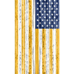 2 yard minky panel - Blue and Gold Flag
