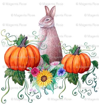 Rabbit and pumpkin Harvest Thanksgiving