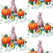 Rrabbit_and_pumpkins_on_white_shop_thumb
