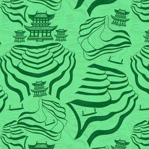 Rice Fields in green on green
