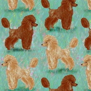 Custom Red and Apricot Poodles on Pastels