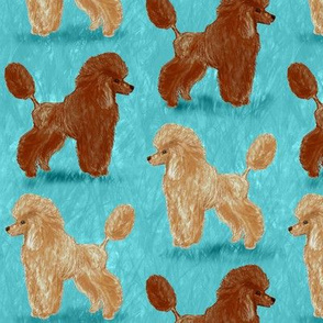 Custom Red and Apricot Poodles on Light Teal