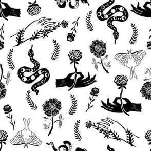 Luna Floral - luna moth, flower, floral, hand, linocut black and white