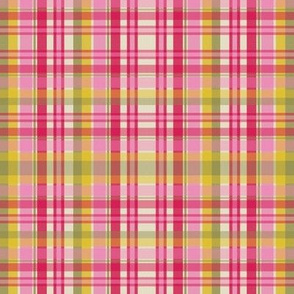 See Through Ribboned Plaid
