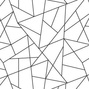 Random Geometric Lines Pattern | Black and White Collection