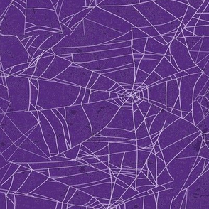 Spooky Spiderweb on Purple