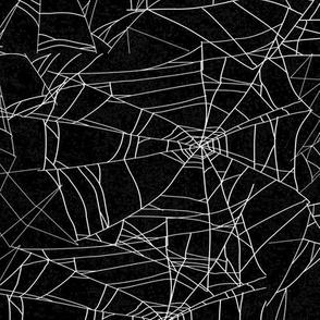 Spooky Halloween Spider Spiderweb on Black