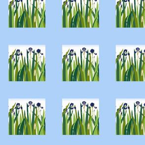 Irises for Spoonflower