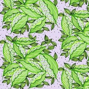 Leaf party/lavender