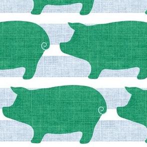 Mr.  Pig  / Green-Gray