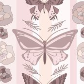 Rblush_pink_butterfly_pattern_shop_thumb
