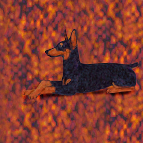 Black and Rust Doberman Lying on Rusty Texture for Pillow