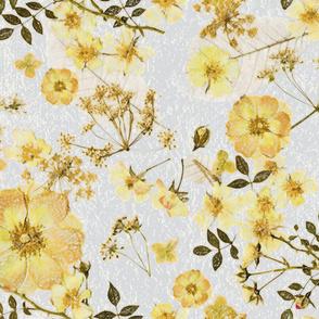 Wild Yellow Roses