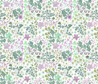 wildflower mint lilac