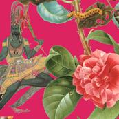 Bengal Rose Xanthia2