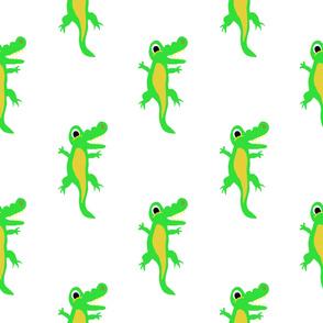 Animals From Around the World, Mr Crocodile